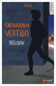 Snowdonia Vertigo